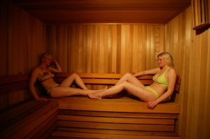 Sauna at Alpine Springs