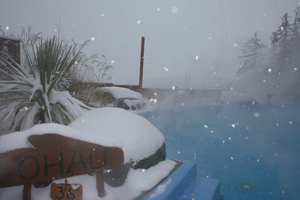Snow around the Hot Pools